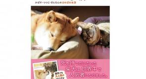 有名、日本犬&猫ブログ紹介「かぼすちゃんとおさんぽ」。