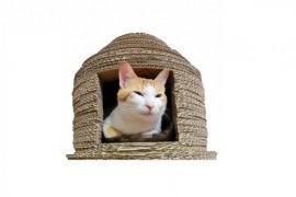 おしゃれでかわいい猫小屋5選