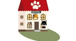猫や犬を預けたい!ペットホテルの相場は?